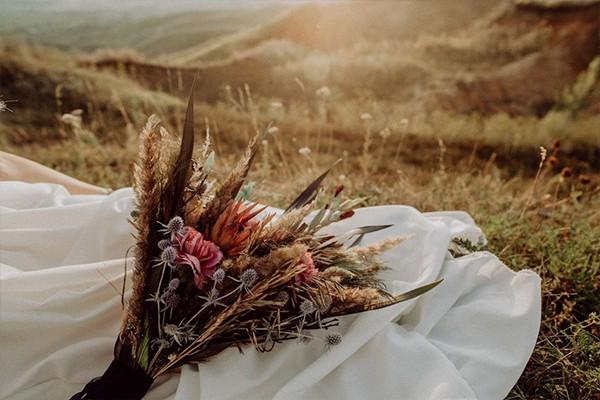 beitragsbild-trockenblumen
