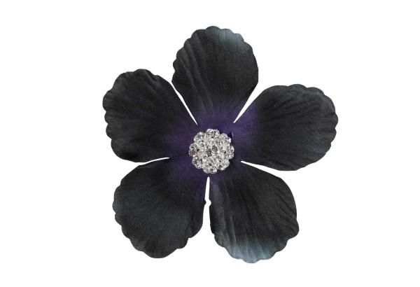 Seidenblume mit Kristallen; Black