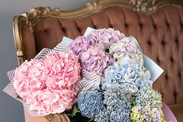 wedding-lounge-blogbild